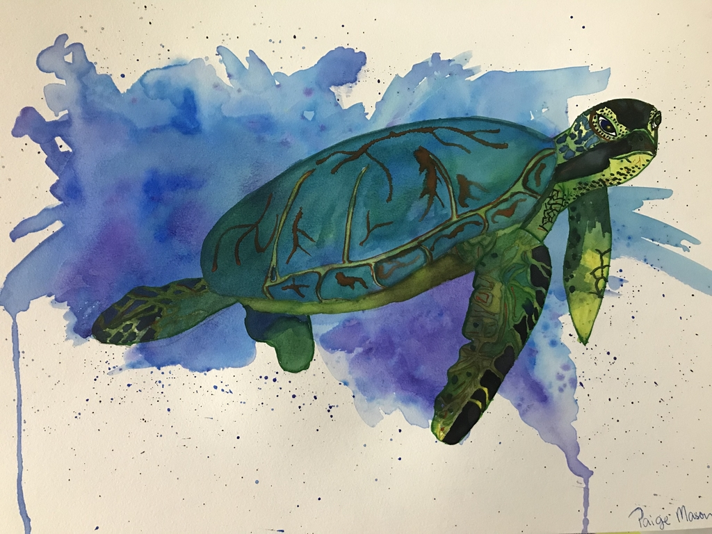 Water color by Paige Mason